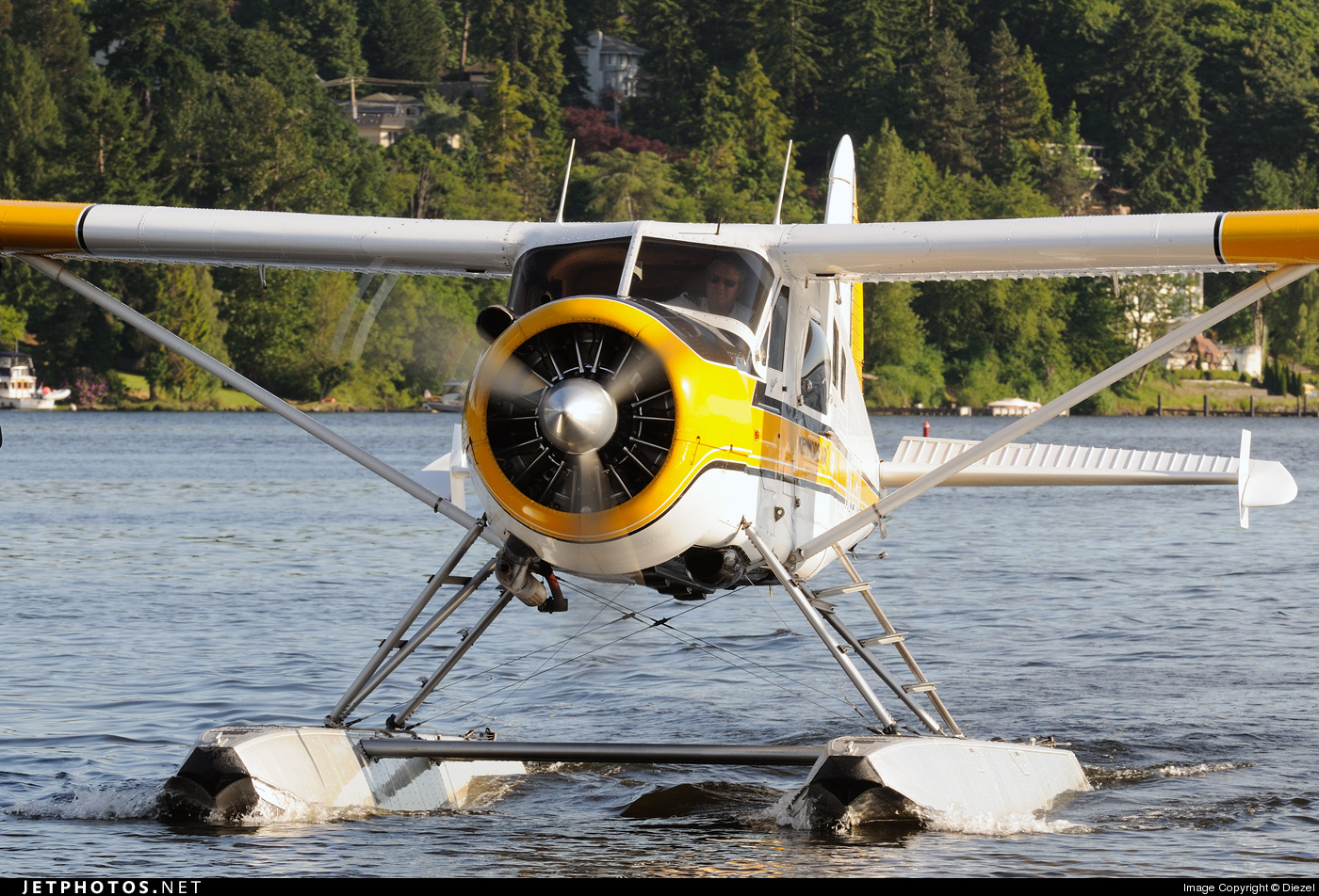 Photo of N6781L De Havilland Canada DHC-2 Mk.I Beaver by Diezel